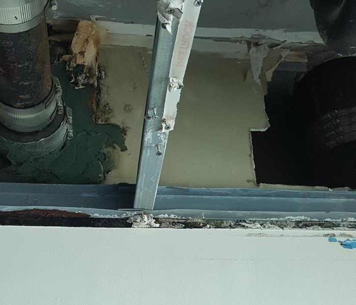 Mold in Residential Apartment