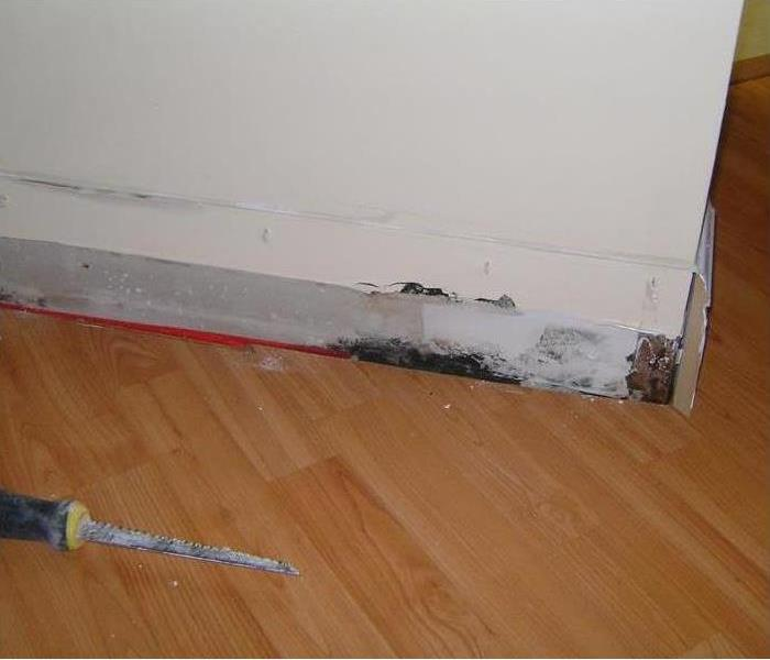 black mold behind skirting board and a small saw on the floor